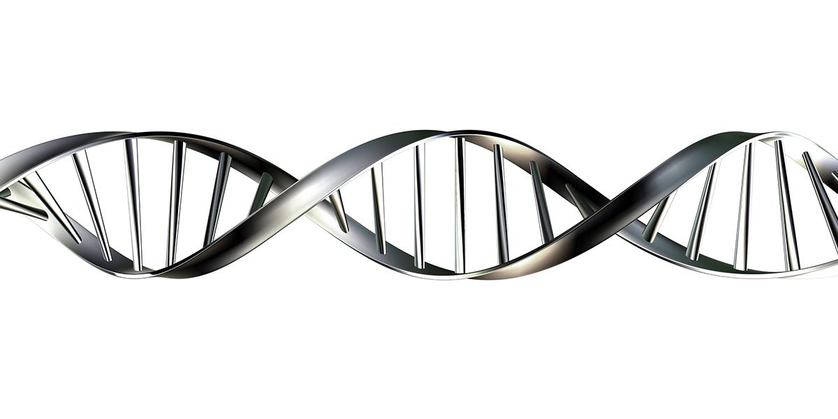 ¿Qué importancia tiene el factor hereditario en las varices?