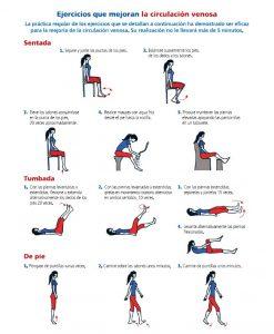 ejercicios circulación venosa